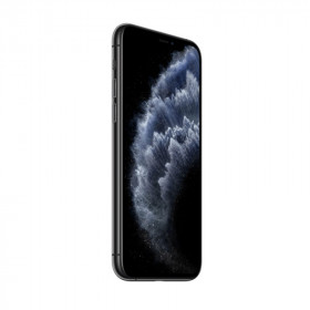 iPhone 11 Pro Max SANS FACE ID Gris Sidéral 256Go Reconditionné   SMAAART